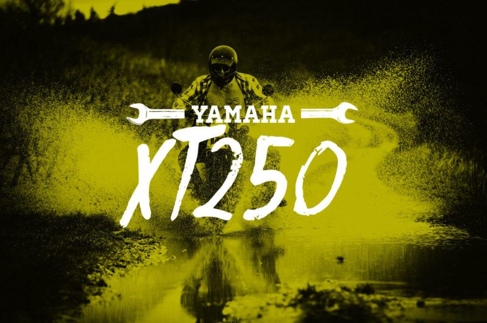 XT250 - Einsauen