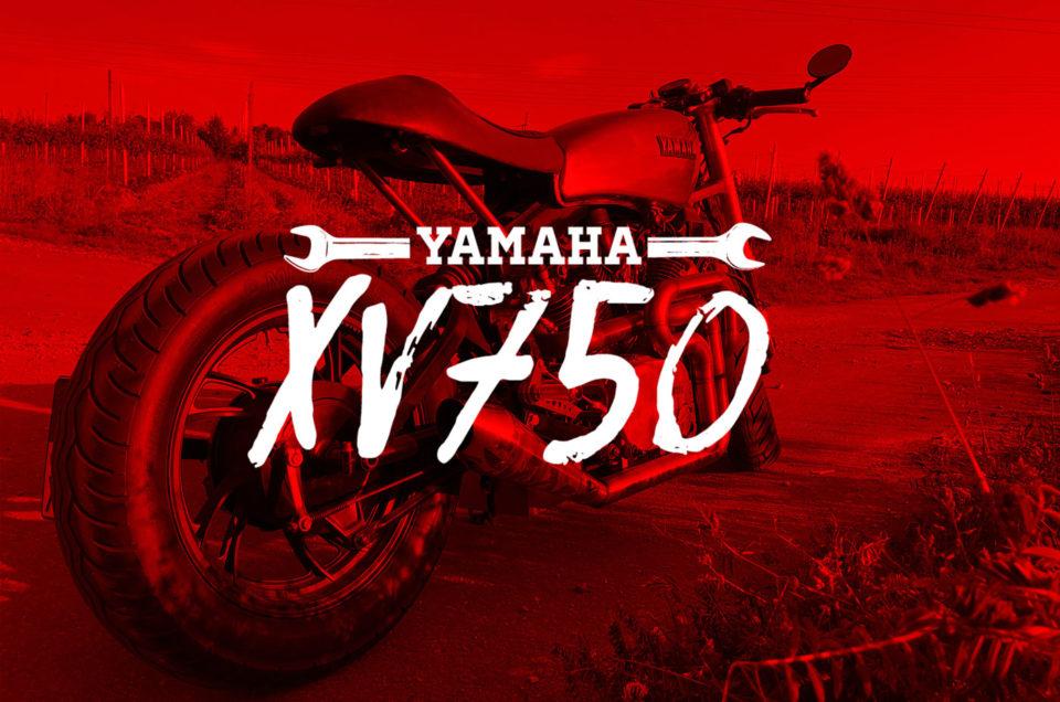 XV750 - Aktueller Stand
